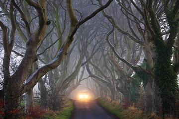 Recorrido por los lugares de rodaje de Juego de Tronos desde Belfast...