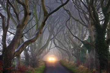 Tour por lugares de rodaje de Juego de tronos desde Belfast