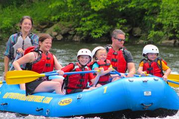 Day Trip Lower Pigeon Smoky Mountain River Float near Gatlinburg, Tennessee