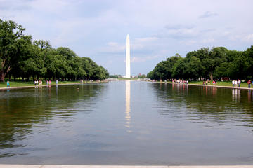 Private DC Sightseeing Tour for 6-14 Travelers