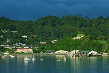 One-Way Ferry to Stewart Island from Bluff