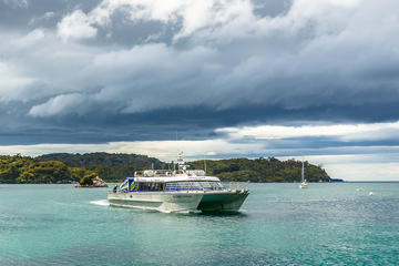 One-Way Ferry to Stewart Island from...