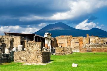 Trasferimento privato di andata e ritorno a Pompei, Vesuvio e cantina