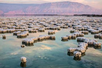 4-Night Jordan Highlights Tour: Petra, Wadi Rum, Dead Sea, and Aqaba
