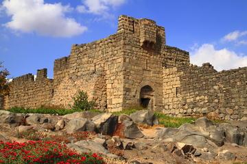 Excursión privada: excursión a los castillos del desierto del este de...