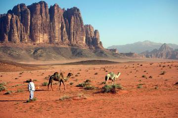 Jordan 9-Day Tour: Wadi Rum, Petra, Dead Sea, Jerash, Aqaba