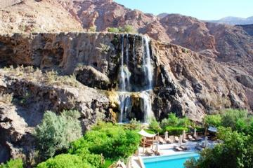 Overnight in Ma'in Hot Springs from Amman Airport