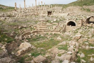 Private Full Day Tour to the Best Preserved Roman Ruins of Jordan Umm...