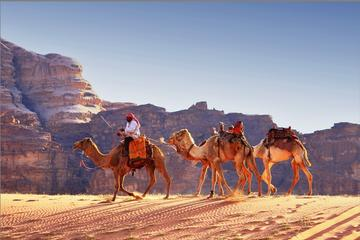 Private Full-Day Tour to Wadi Rum...