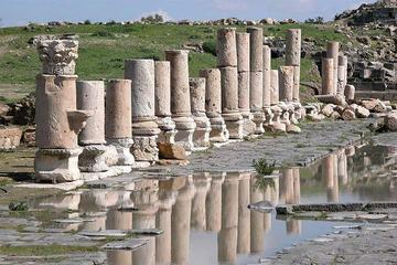 Private Full-Day Umm Qais Visit from Dead Sea