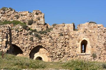 Private Half Day Kerak: Kings Highway Tour from Amman