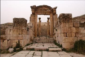Private North Tour Jerash Ajloun and Pella from Dead Sea
