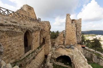 Private North Tour Jerash Ajloun and Um Qais  from Amman
