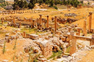 Private North Tour Jerash Ajloun and Um Qais  from Dead Sea