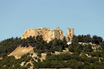Private North Tour Jerash and Ajlun...