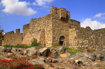 Tour privé : tour des châteaux du désert et de la Jordanie orientale...