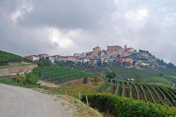 Recorrido de 4 días por el maravillosos Piamonte desde Milán