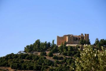 Amman Jerash and Ajloun Castle Private...