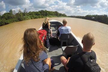 3D2N Kinabatangan River Cruise
