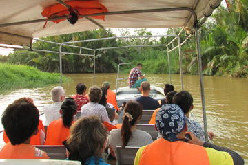 Weston Fireflies River Cruise from...