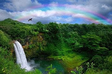 コナ海岸エクスカーション: 熱帯雨林の滝とパー…