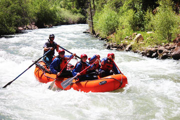 Day Trip Telluride Half-Day Rafting Tour on the San Miguel River near Placerville, Colorado