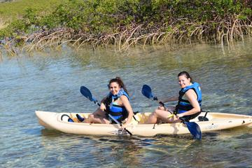 Bonefish Pond National Park Kayaking Tour and Fritter Making Lesson