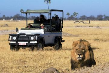 2-Day Camping Safari in Chobe...