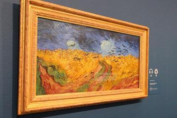 Van Gogh Museum Amsterdam Guided Tour...