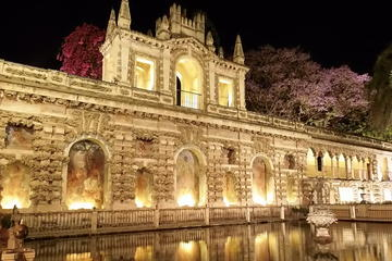 Seville at Night Tour with Flamenco Show at Casa de las Guitarras