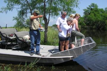 Abenteuer mit dem Luftkissenboot in der Sumpf- und Plantagenlandschaf...