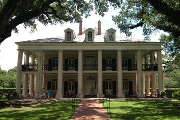 Esperienza nella Cajun Country: tour di una giornata da New Orleans