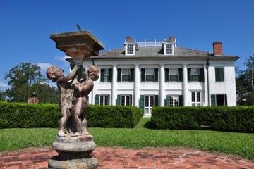 Excursion Nouvelle-Orléans bord de mer : Tour d'une plantation...