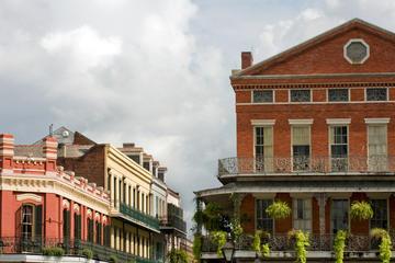 Tour panorámico e histórico de Nueva Orleans para grupos pequeños