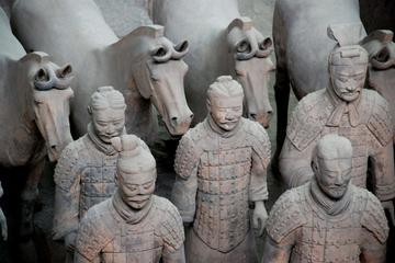 Terra-cotta Warriors, Big Wild Goose Pagoda, Ancient City Wall Private Tour