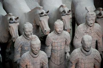Terra-cotta Warriors, Big Wild Goose Pagoda, Ancient City Wall Private Tour