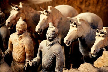 Xian Terra-cotta Warriors and Ancient City Wall Tour