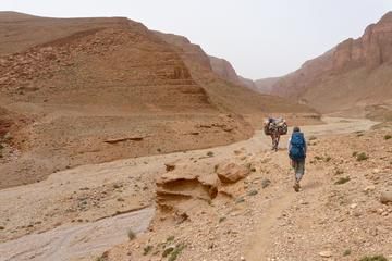 Trekking and Cultural Tour from Tinghir