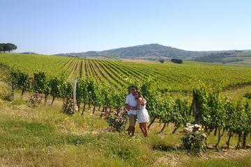Excursão de ônibus pelas vinhas de Brunello