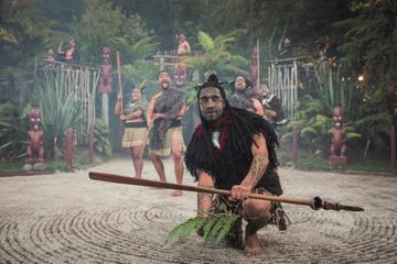 Cena hangi y espectáculo maorí en Rotorua