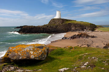 Isle of Anglesey Private Day Trip...