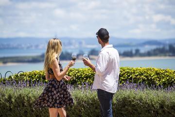 Private Waiheke Scenic Wine and Art...