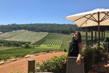 Bickley Valley Wine Tour with Small...