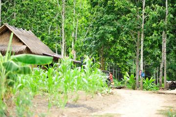Overnight Khmu Village Homestay from Luang Prabang
