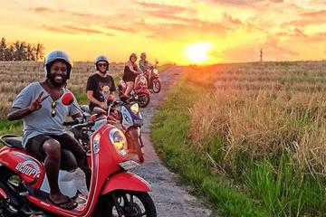 Ubud Small-Group Scooter Tour with Hotel Transfers