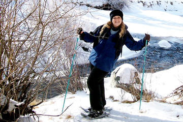 Snowshoeing Nordic from Reno