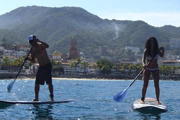Clase de surf de remo de Puerto Vallarta