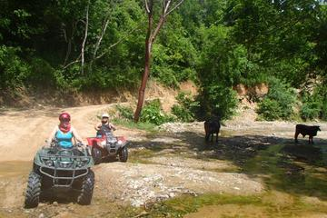 Private Tour: Rancho Las Vegas ATV Adventure