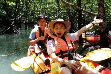 Mangrove Forest Kayaking Tour from...