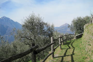 Small Group Hike from Varenna